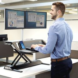 Fellowes Sit-Stand Lotus DX